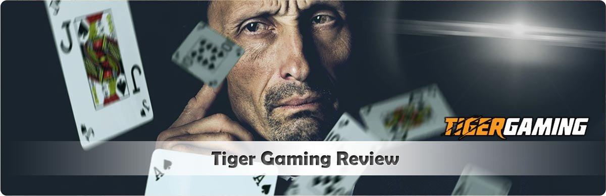 Tiger Gaming Review header